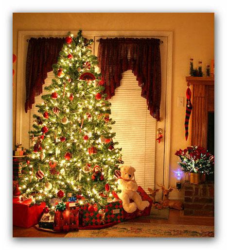Albero Di Natale Pagano.L Albero Di Natale E Un Usanza Pagana E Quindi Non Va Fatto