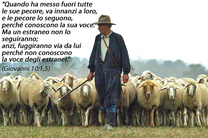 Il ministerio di pastore - La pagina della colorazione delle pecore smarrite ...
