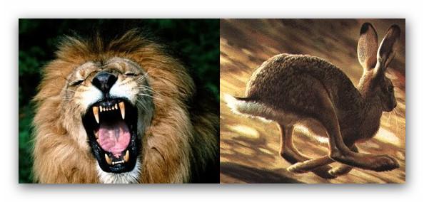 ● I coraggiosi parlano, i codardi tacciono