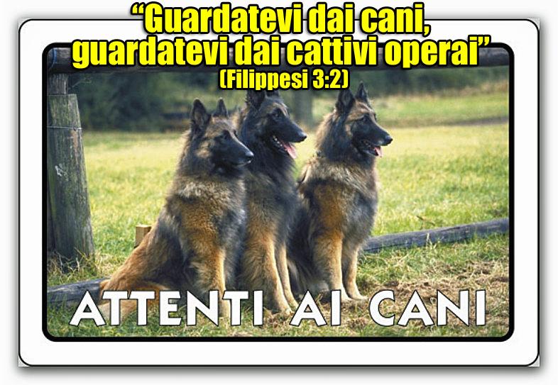 attenzione-cani-filippesi-3-2
