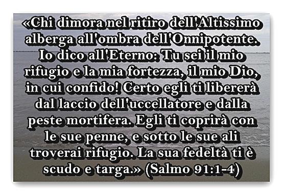 salmo_91